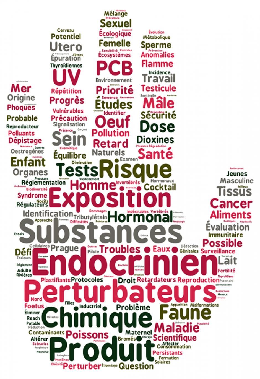 Perturbateurs endocriniens: le gouvernement français doit s'engager pour garantir des critères protecteurs